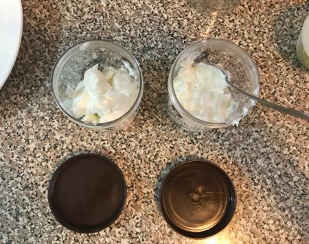 Mint Raita - Yogurt Containers
