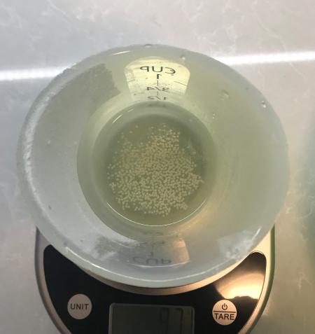 Poolish Batard - Dried Yeast in Water