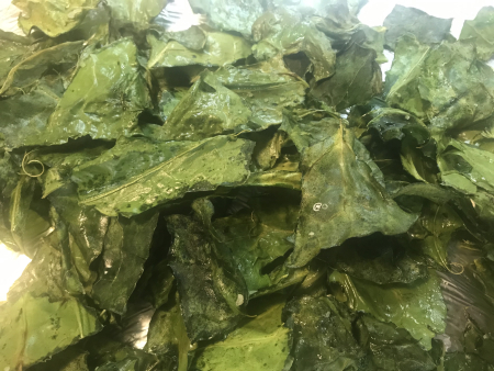 Collard Chips Baked - Close Up v2