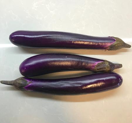 Omni Sichuan Eggplant - Asian Eggplant
